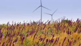 Fuerte viento y turbinas almacen de video