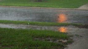 Fuertes lluvias en el asfalto Tempestad de truenos del verano con la lluvia dura que cae en una calle almacen de metraje de vídeo