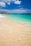 Fuerteventura, παραλία υποζυγίων Στοκ φωτογραφία με δικαίωμα ελεύθερης χρήσης
