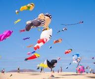 FUERTEVENTURA - 13 NOVEMBER, 2011: HET FESTIVAL VAN DE VLIEGER Stock Foto
