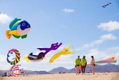 FUERTEVENTURA - 13 NOVEMBER: Het festival van de vlieger Stock Foto