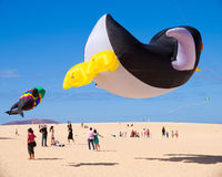 FUERTEVENTURA - 13 NOVEMBRE : Festival de cerf-volant Image libre de droits