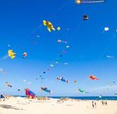 FUERTEVENTURA - 13 NOVEMBRE : Festival de cerf-volant Photos stock