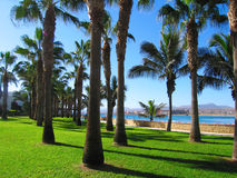 Fuerteventura Royalty Free Stock Photography
