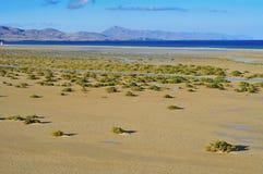 Fuerteventura Fotografia de Stock Royalty Free