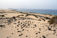 Fuerteventura beach Royalty Free Stock Photography