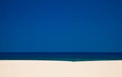 Fuerteventura, Burro plaża obrazy royalty free