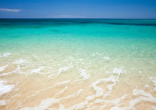 Fuerteventura, Burro plaża obrazy stock