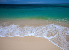 Fuerteventura, Burro plaża zdjęcie royalty free