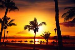 Fuerteventura Caleta del Fuste Canary Islands Royalty Free Stock Photography