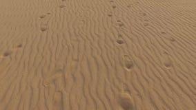 Fuerteventura, Canary Islands, Spain stock video