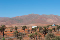 Fuerteventura, Canary Islands, Spain. View of Canary landscape with palms, white houses and desertic land on September 2, 2016. Fuerteventura is known worldwide stock photography