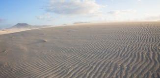 Fuerteventura, Corralejo Royalty Free Stock Image