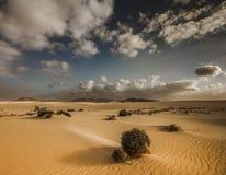 Fuerteventura Corralejo. Landscape of Corralejo a desert in Fuerteventura, Spain Royalty Free Stock Photo