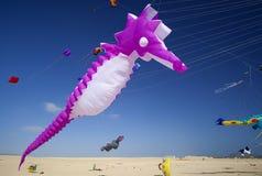 Fuerteventura-Drachen-Festival Lizenzfreie Stockbilder