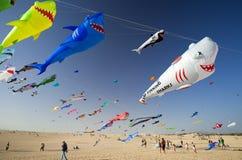 Fuerteventura-Drachen-Festival Lizenzfreie Stockfotografie
