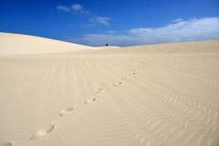 Fuerteventura dunas Royalty Free Stock Images
