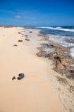 Fuerteventura, edge of Burro beach Royalty Free Stock Images