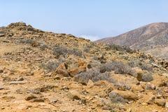 Fuerteventura Environment Royalty Free Stock Images