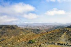 Fuerteventura Environment Stock Photography