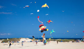 FUERTEVENTURA, ESPAGNE, le 8 novembre 2014, festival de cerf-volant Photos libres de droits