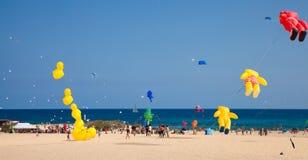 FUERTEVENTURA, ESPAGNE, le 8 novembre 2014, festival de cerf-volant Photo libre de droits