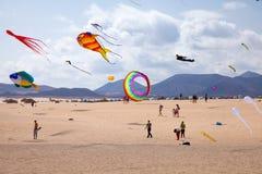 FUERTEVENTURA, ESPAGNE, le 8 novembre 2014, festival de cerf-volant Images stock