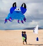 FUERTEVENTURA, ESPANHA, o 8 de novembro de 2014, festival do papagaio Imagens de Stock Royalty Free