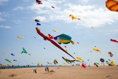 FUERTEVENTURA, ESPANHA, o 8 de novembro de 2014, festival do papagaio Imagem de Stock