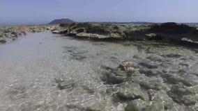 Fuerteventura: Groot Playas-strand, één van de beroemdste stranden voor het surfen en vlieger die, glashelder water, rots surfen stock video