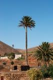 fuerteventura, Ilhas Canárias, Spain Fotografia de Stock