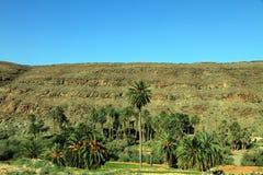 Fuerteventura island Canary islands Spain royalty free stock image