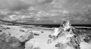 Fuerteventura, isole Canarie, costa ovest di Jandia Fotografia Stock Libera da Diritti