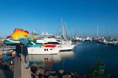 fuerteventura, Isole Canarie, Spagna Immagine Stock Libera da Diritti