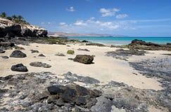 Fuerteventura-Küste Lizenzfreie Stockfotos