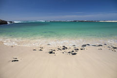 Fuerteventura kanariefågelöar, strand för Playa LaConcha på El Cotil Fotografering för Bildbyråer