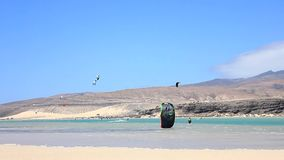 Fuerteventura - Kanarische Inseln - September 2015 - Kitesurfer, das auf einen Strand auf Kanarischen Inseln Fuerteventuras geht stock footage