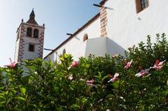 fuerteventura kanarowe wyspy Spain Zdjęcia Stock