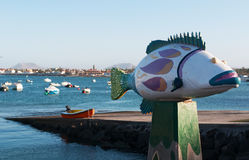 fuerteventura kanarowe wyspy Spain Fotografia Stock
