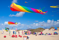 Fuerteventura kite festival Royalty Free Stock Photos