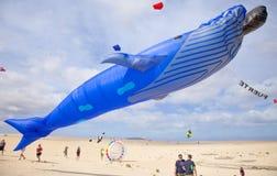 Fuerteventura Kite Festival Stock Photo