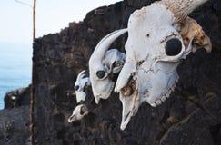 Fuerteventura Las Playitas 4. Art with 'skulls' found at Las Playitas at Fuerteventura Stock Photography