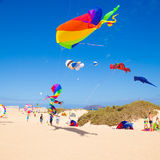 FUERTEVENTURA - NOVEMBER 13, 2011: KITE FESTIVAL Stock Photography