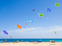FUERTEVENTURA - NOVEMBER 13, 2011: KITE FESTIVAL Royalty Free Stock Photo