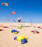 FUERTEVENTURA - NOVEMBER 13: Kite festival Stock Photos