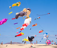 FUERTEVENTURA - NOVEMBER 13: Kite festival Royalty Free Stock Images