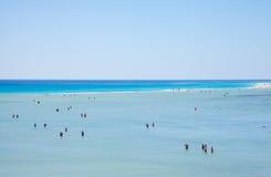 Fuerteventura,  Playa De Sotavento Stock Image