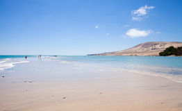 Fuerteventura, Playa De Sotavento. On Jandia peninsula stock photo