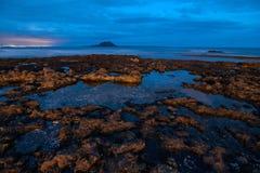 Fuerteventura shoreline på den blåa timmen Arkivbild