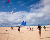 FUERTEVENTURA, SPAIN, NOVEMBER 08 2014, Kite Festival Stock Images